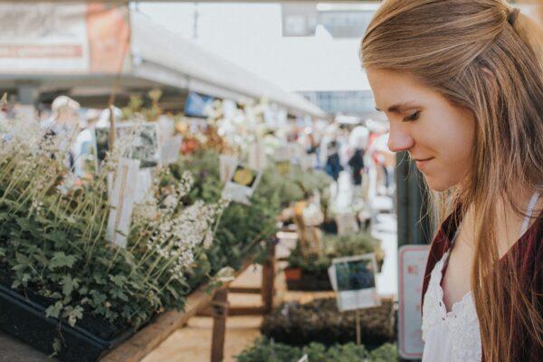 Trhy s čerstvými bylinkami